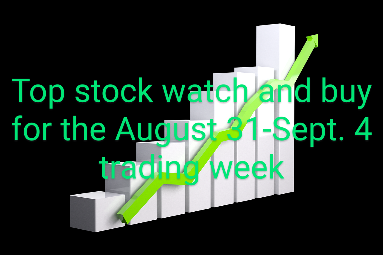 A Top Stock To Watch And Buy For The August 31- September 4 Trading Week.